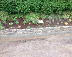 newcestown-planting